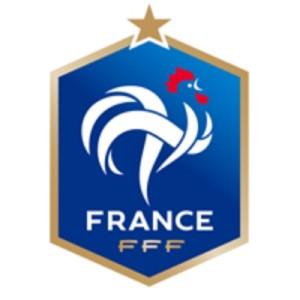 PE 2016 Prancis Logo